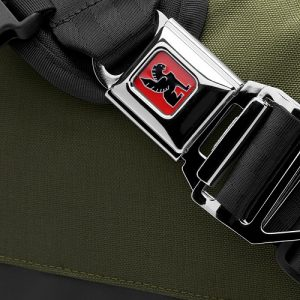 Chrome Citizen buckle