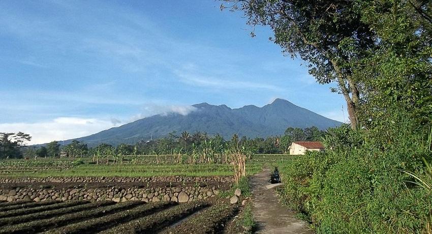 Mt Salak
